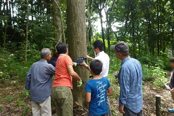 平成28年9月 柏町市民の森愛護会と連携し、柏町市民の森に地域の子ども達がつくった樹名板を設置
